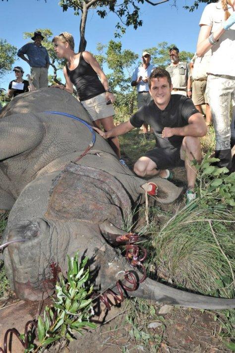 Picture from Entabeni Safari Conservancy