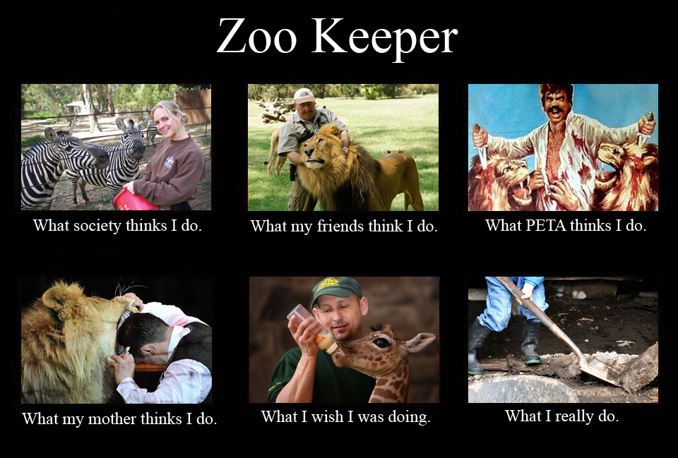 Funny Zoo Meme : You know re a zookeeper when… endangered living
