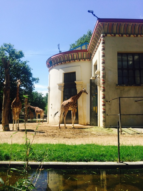 Antwerpen Zoo