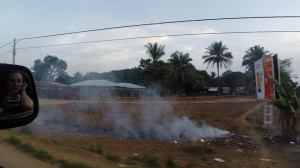 Agricultural burning on the side of the road in Lungi
